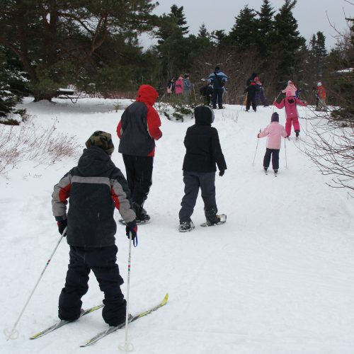 Participants cross-country skiing and snowshoeing at pippy park.
